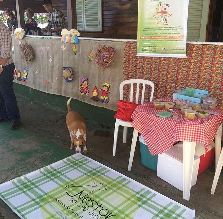 Day Care em São Paulo na Consolação - Dog Resort