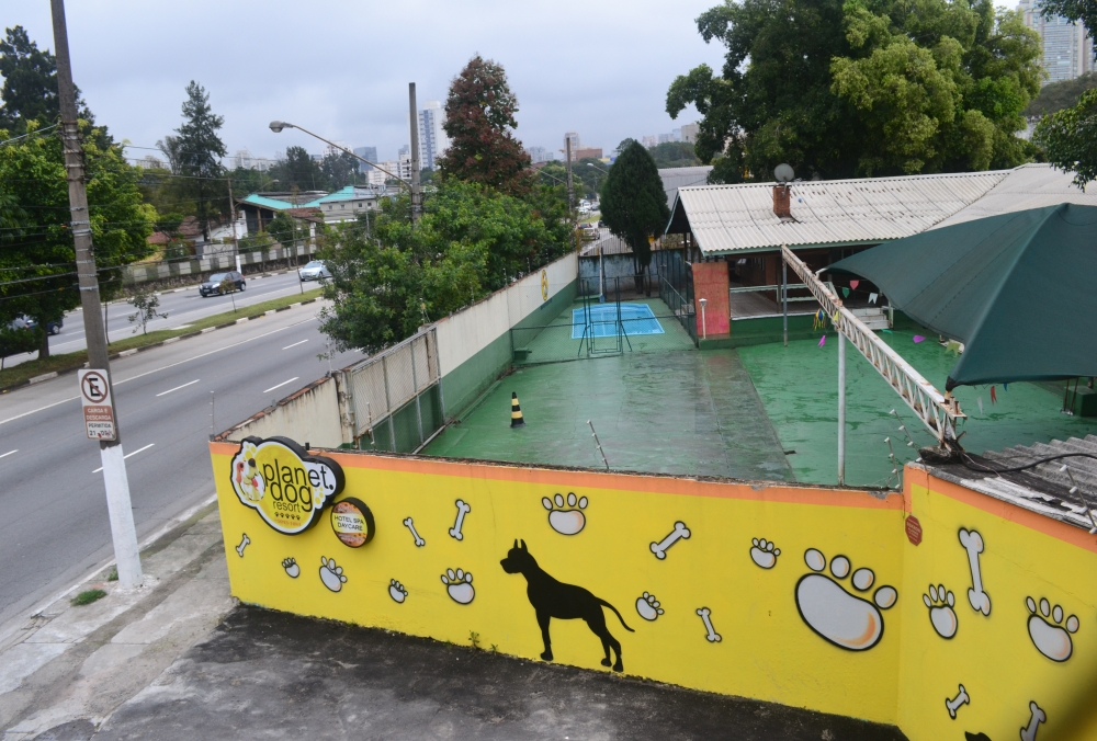 Hotéis para Cães na Penha - Hotel de Cães