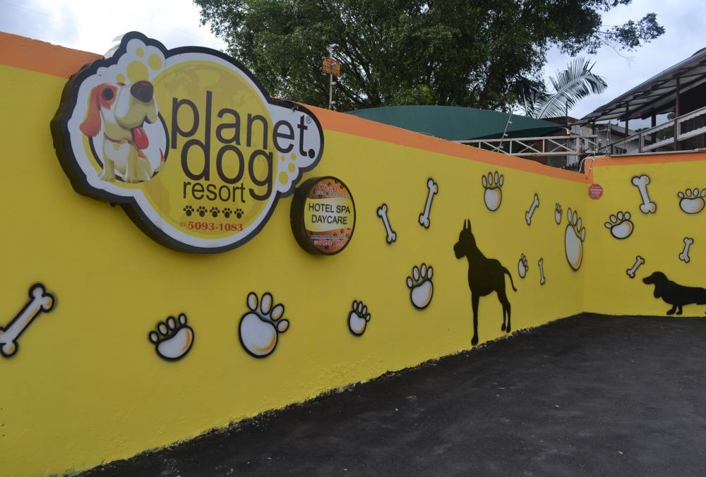 Quanto Custa Hospedagem de Cachorro na Vila Sônia - Hotel de Cachorro