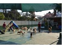 creche para cão no Parque do Carmo