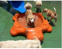 hotéis para cachorro preço em Perus