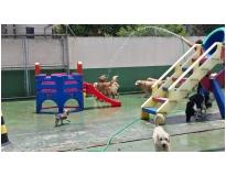 quanto custa hotéis para cachorro Água Chata
