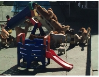 spa para cães em são paulo preço no Tremembé
